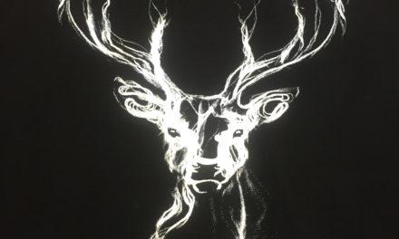 Sérigraphie sur Tee shirt pour une Collection Sport et Nature