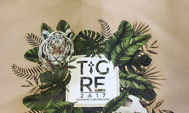 Polo Personnalisé en Flocage pour l'évenement Tigre 2017